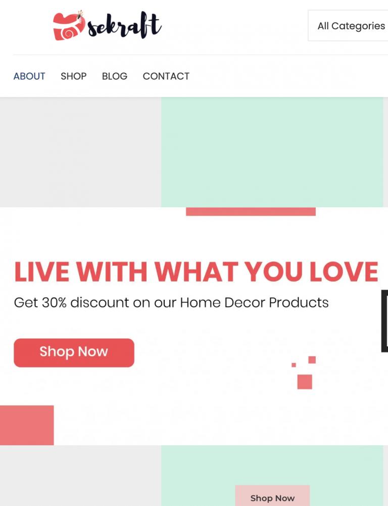 Screenshot of Dilsekrafts' ecommerce applications